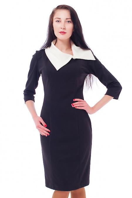 Купить платье-футляр черное с белым воротником Деловая женская одежда