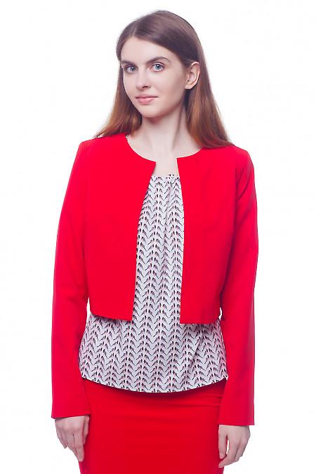 Кардиган короткий красный Деловая женская одежда фото
