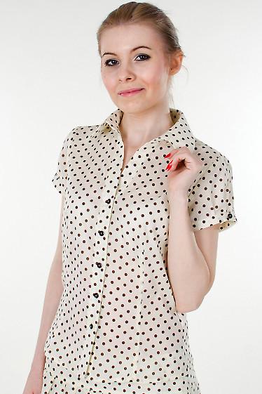 Фото Блузка в мелкий коричневый горошек Деловая женская одежда