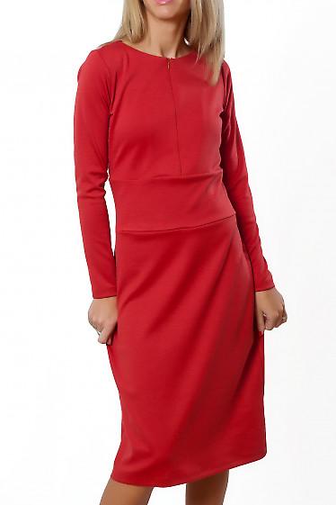 Купить платье коралловое с отрезной талией. Деловая женская одежда