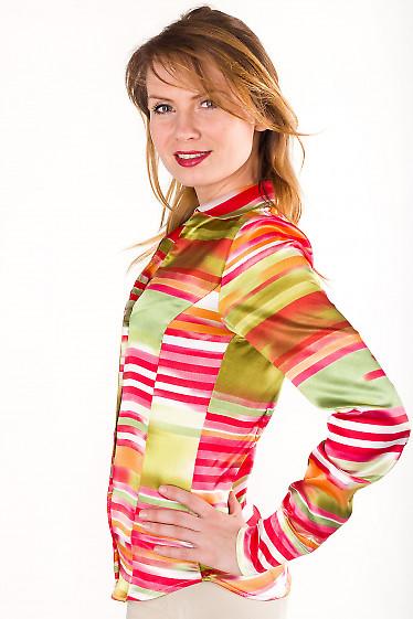 Фото Блузка классическая разноцветная Деловая женская одежда