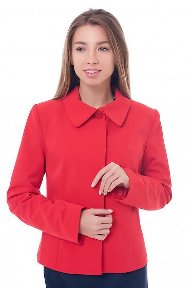 Жакет красный с закрытой планкой Деловая женская одежда фото