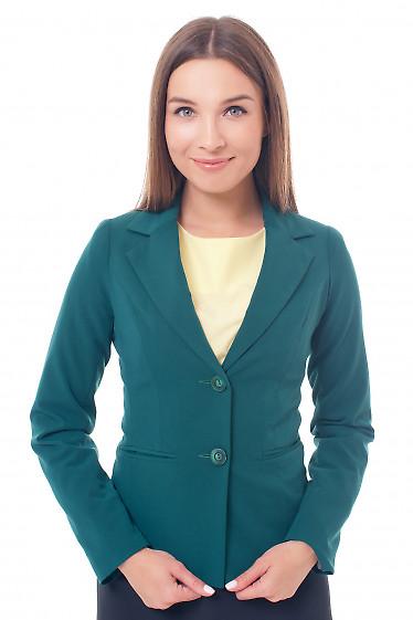 Жакет зеленый на двух пуговицах Деловая женская одежда фото