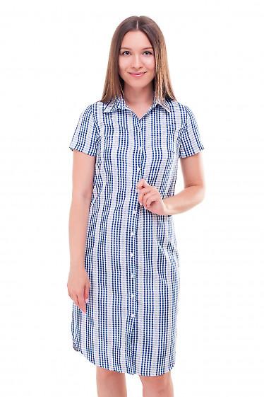 Платье-рубашка в синюю клетку Деловая женская одежда фото