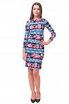 Купить платье трикотажное в кружево Деловая женская одежда